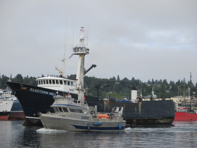 F/V Finnegan, Gillnetter & F/V Aleutian No. 1, Seattle Ship Canal, this is what Coffee on our deck looks like with breakfast boat traffic!