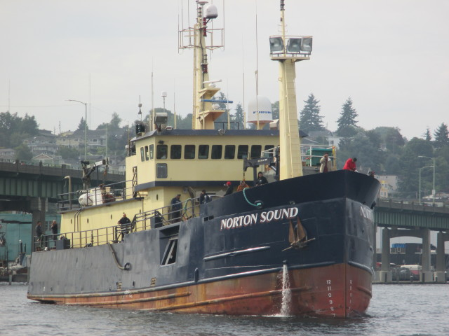 Norton Sound AK Processor, Salmon AK Season Here they come! Loaded with Summer Crew N. Bound for Alaska