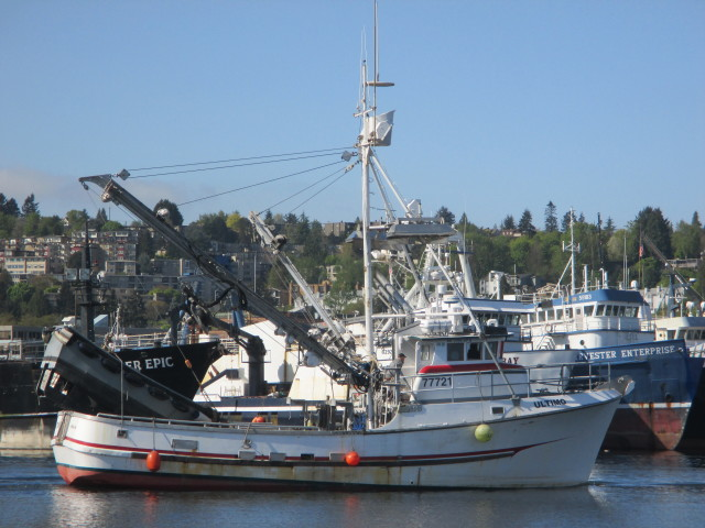 F/V Ultimo, Seiner SE AK Fishing Boat, Fishermen's Terminal Cruising by F/V Clipper Eric & F/V Mystery Bay - now for charter!