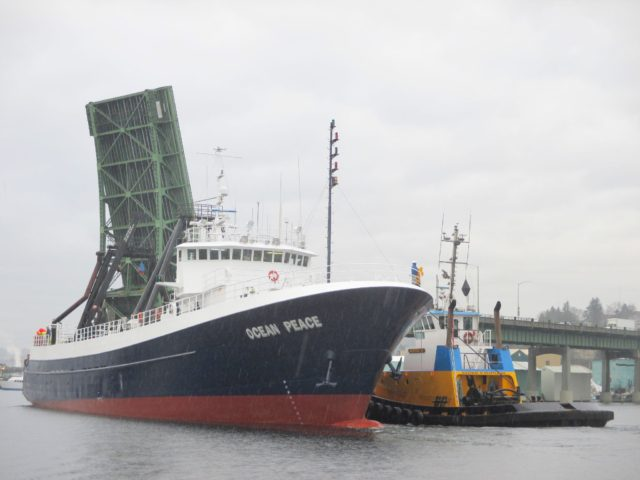 F/V Ocean Peace, Catcher/Processor, Ballard Bridge Lift, Western Towboat Westrac II Assist on the hip, raining like crazy, Photography by: Salty Dog Boating News, Salty Sea Chick, Marine Traffic Ship Canal Source PNW