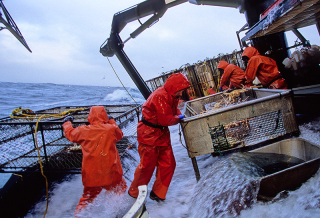 Alaskan-king-crab-fishing-picture
