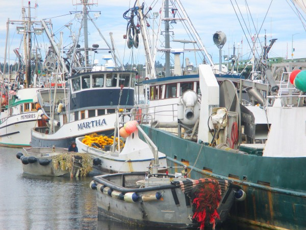 Seiners Fishermen's Terminal, Lots of Fall Boat Work after Salmon Season up in AK