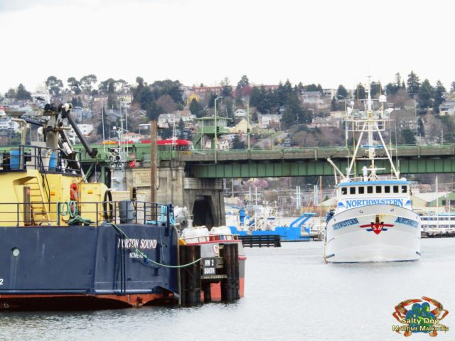 Northwestern, Deadliest Catch Crabber, Homecoming... Passing the Ballard Bridge, Offloading Pots at Fishermen's Terminal, Then to Ballard Pac. Fish Shipyard Home Port, FILSON Welcome to Ballard, Photography by: Salty Dog Boating News, Salty Sea Chick, Marine Traffic PNW Ballard Canal Source!