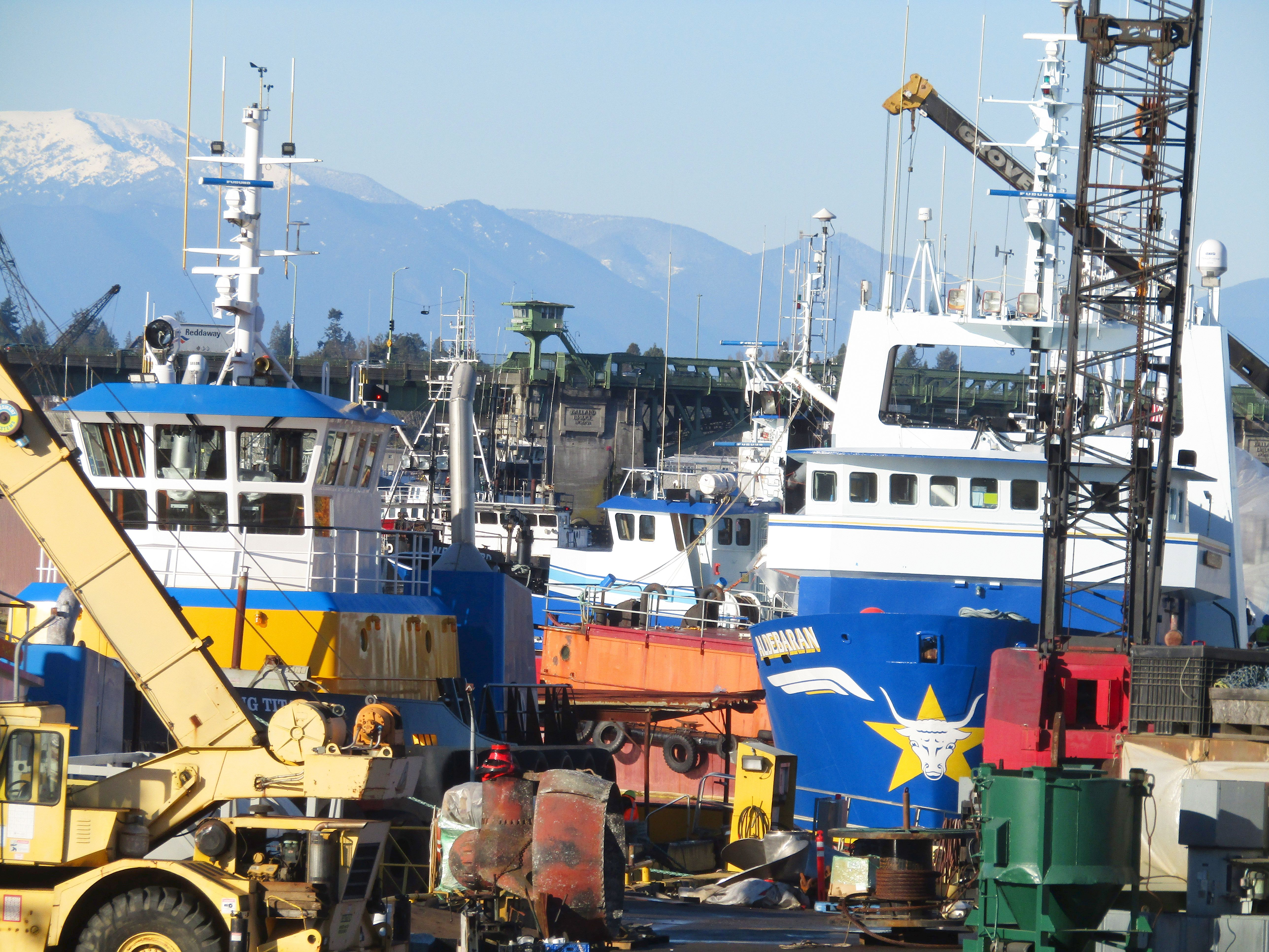 Aldebaran trawl catcher belaena salmon tender trident for Seattle fishing jobs