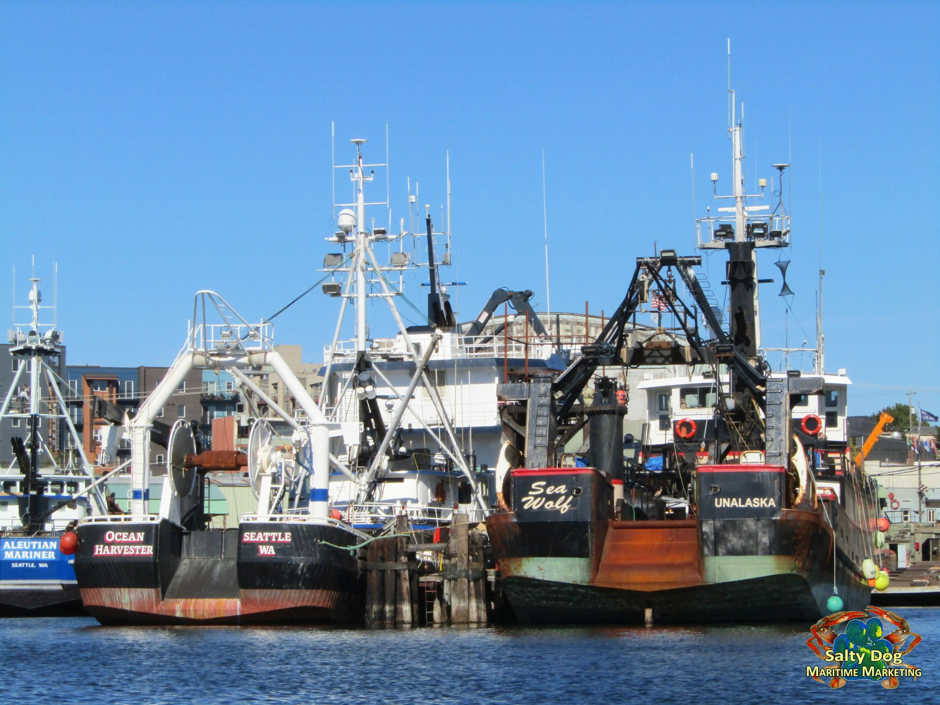 Pacific fishermen shipyard salty dog boating news for Commercial fishing jobs