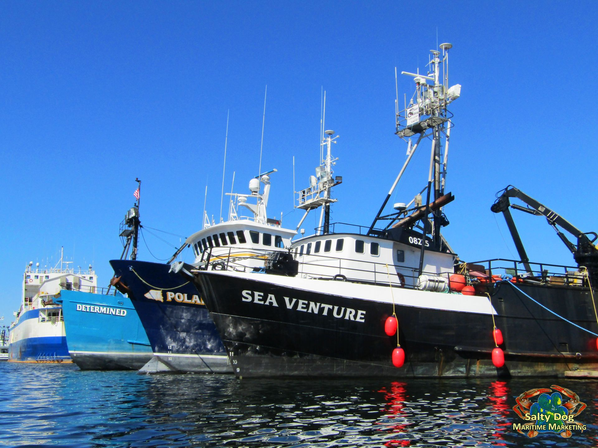 Pacific fishermen shipyard salty dog boating news for Seattle fishing jobs