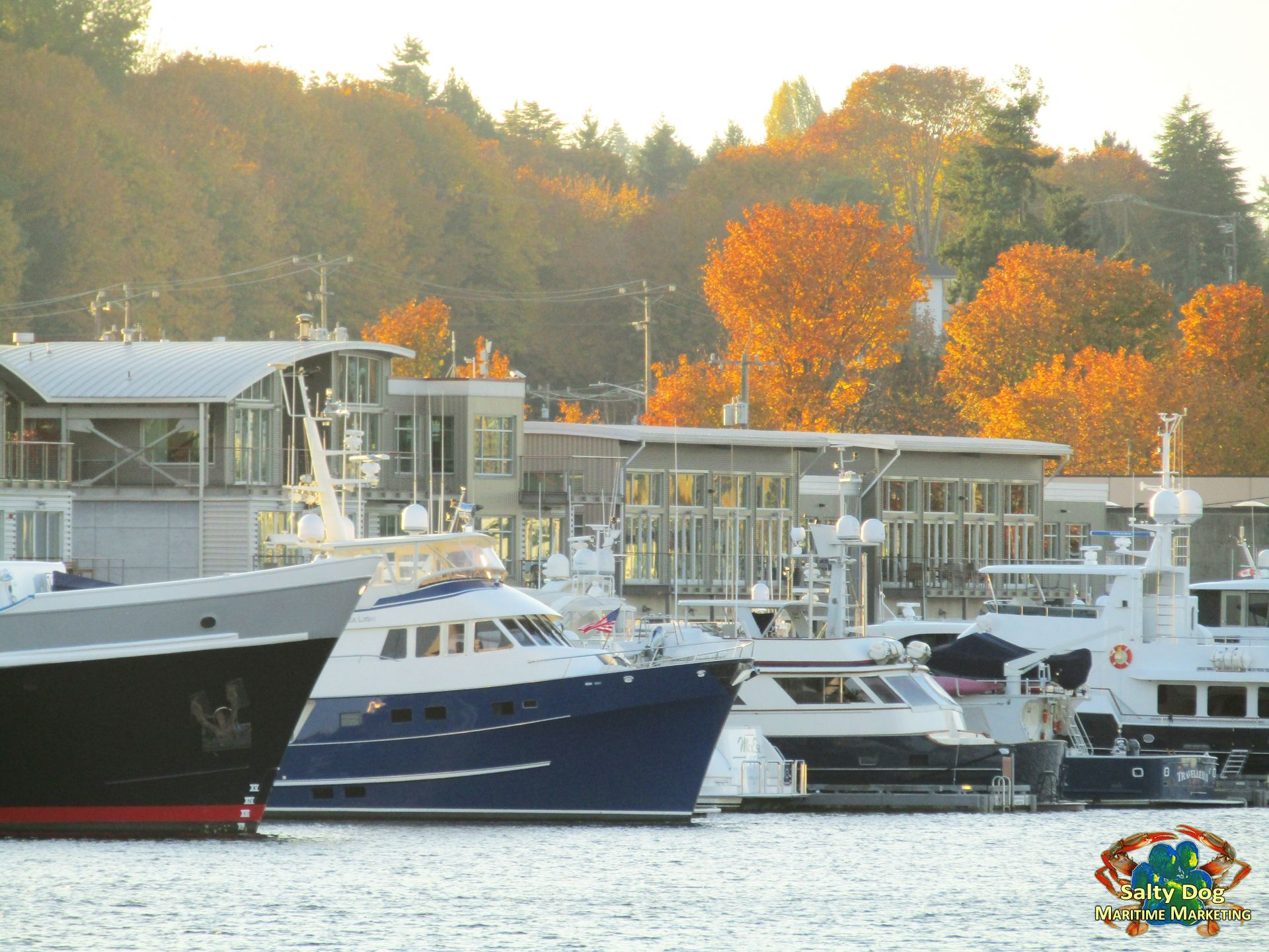 sbmc, salmon bay marine center, superyacht moorage, mega yacht